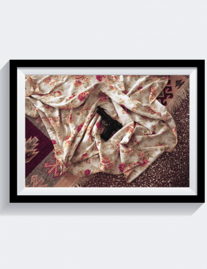 YCEDFNBARC - Laura Lafon - Gun and Blanket - Stampa Fine Art